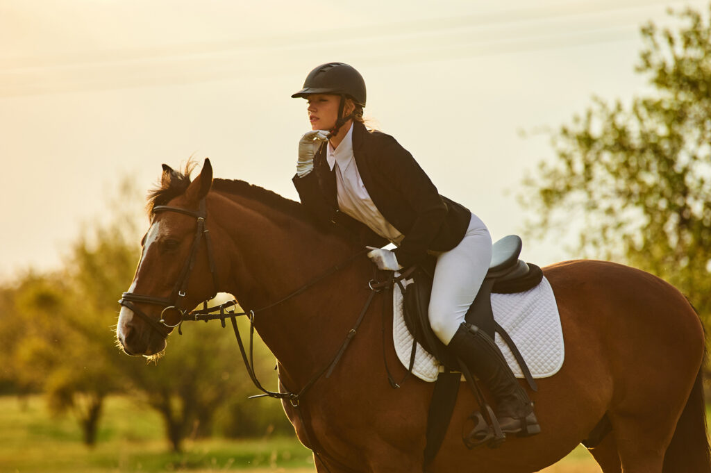 Girl equestrian rider riding a beautiful horse  in the rays of t