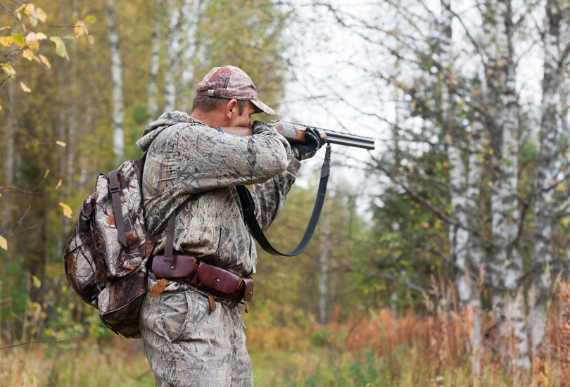 hunter in camouflage taking aim from a hunting gun in the wildfowl